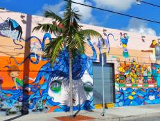 Street Art: Wynwood Arts District