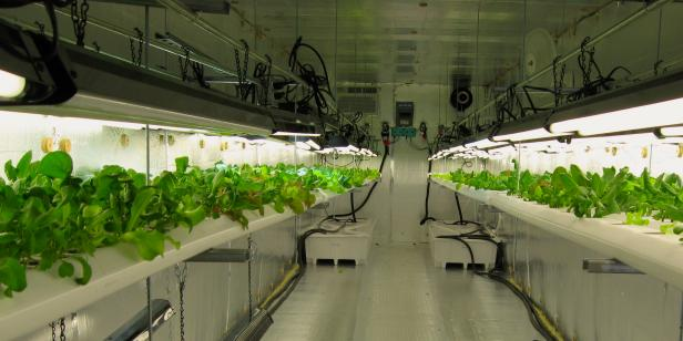 Atlanta Urban Farming, Electricity