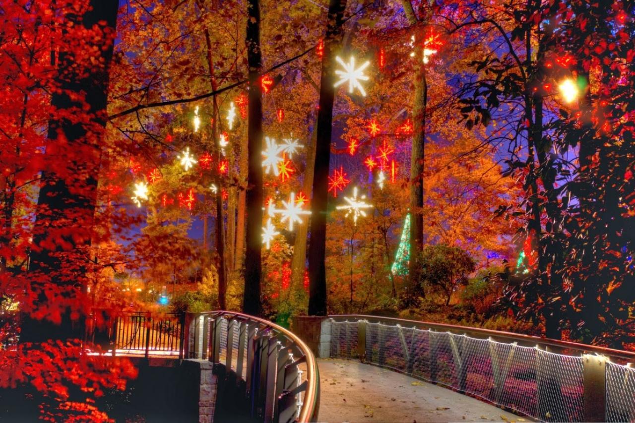 Atlanta Botanical Gardens Transformed Into Winter Wonderland | GAC
